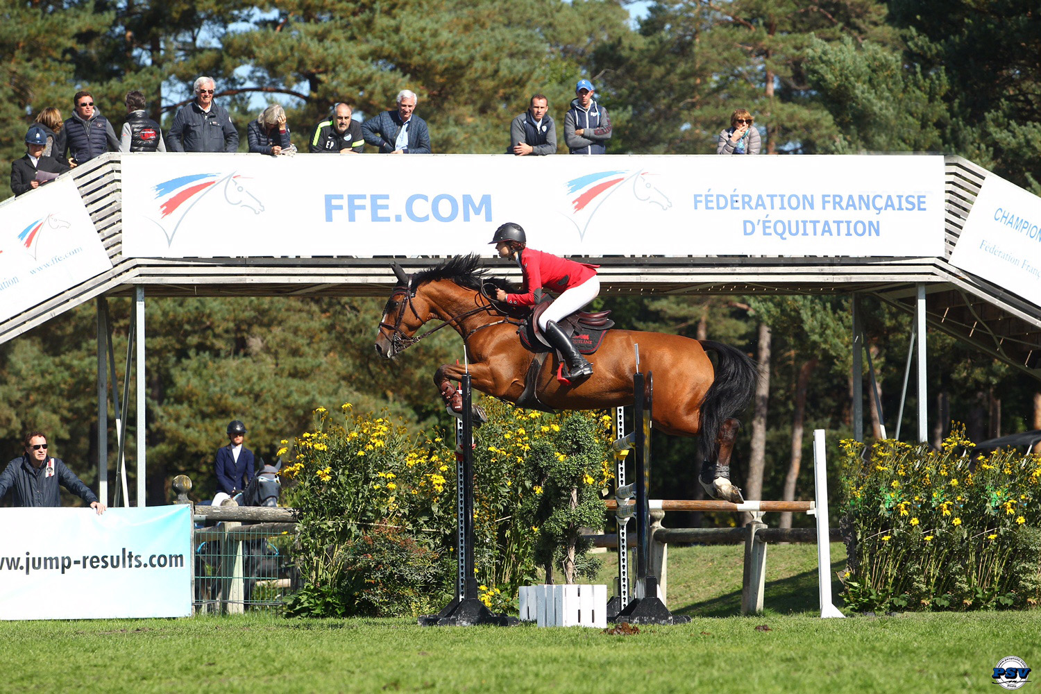 Reine des ponts Grand National 2015