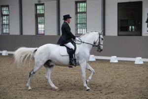 Pierre de Backer Coach Dressage Clarance Gendron